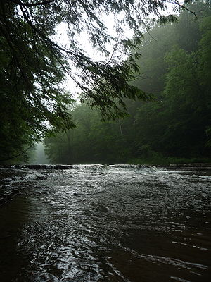 Chagrin River at South Chagrin Reservation Photo by Katie Sekelsky