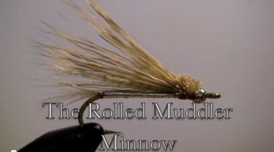 rolled muddler minnos