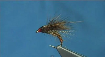 Cinnamon_Brown_Caddis_Emerger_McPhail