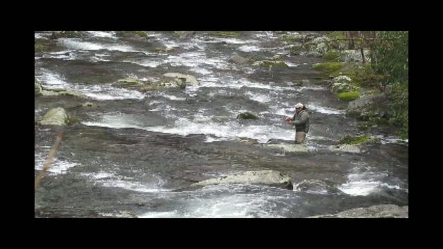 Fly Fishing with Strike Indicators: Smoky Mountain Style