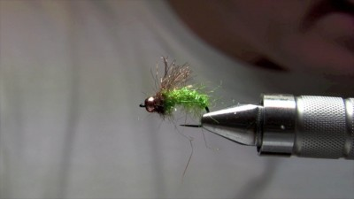 magic caddis rich strolis