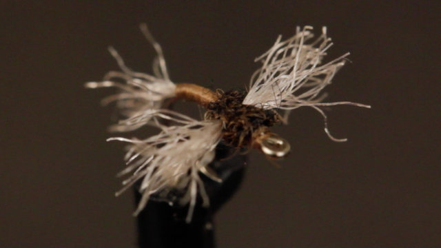 [Video] Tying Craig Mathew's Zelon Midge