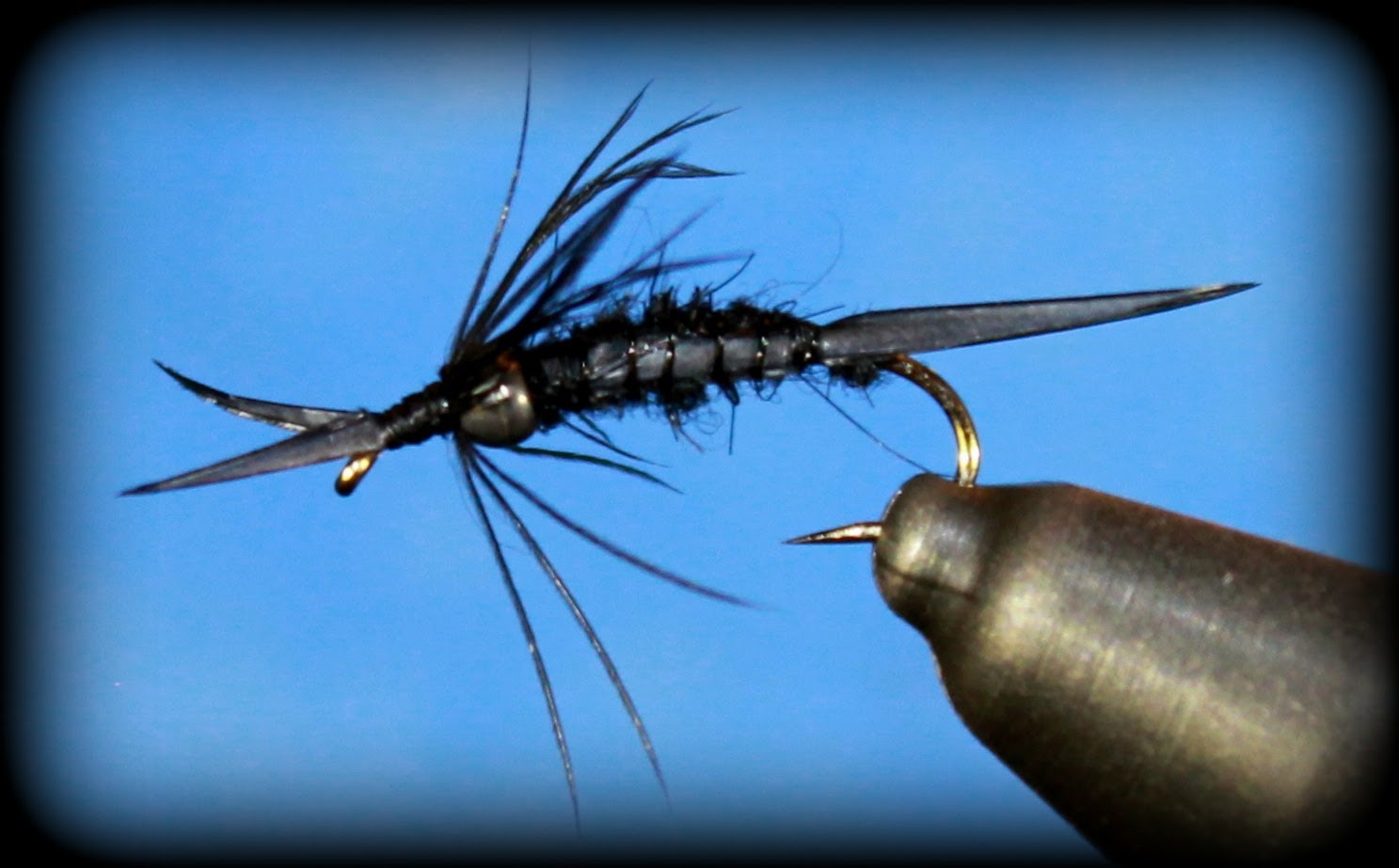 Fly Tying: Biot Stonefly Nymph