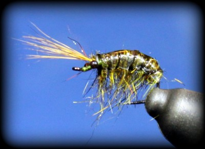 Fly Tying: Olive Scud Nymph